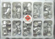 Produits Dentaires Posteriors Stainless Steal Shells 100 pcs - Made in Swiss